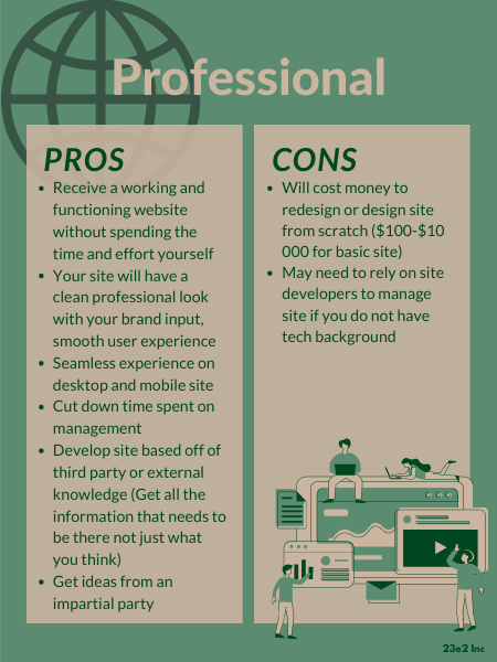 pros and cons of hiring a professional web developer