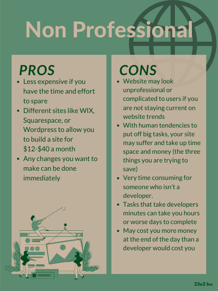 pros and cons of a non professional web developer