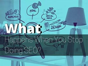 what happens when you stop seo