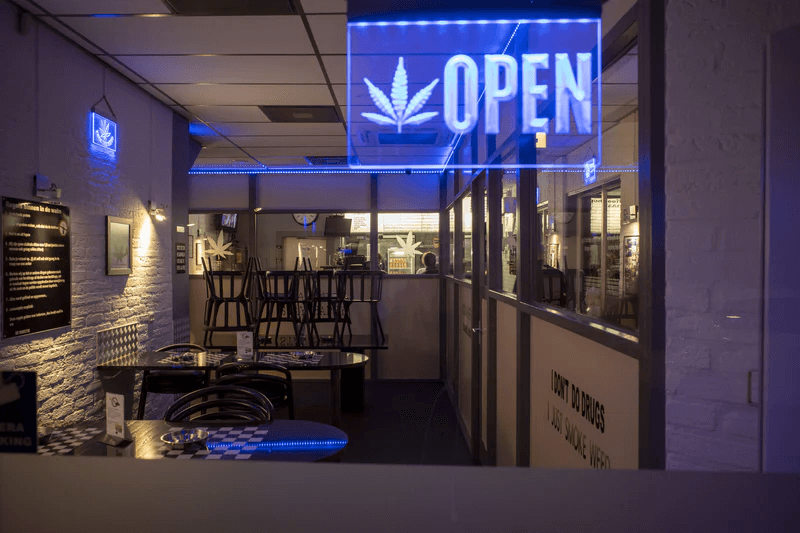 cannabis store interior